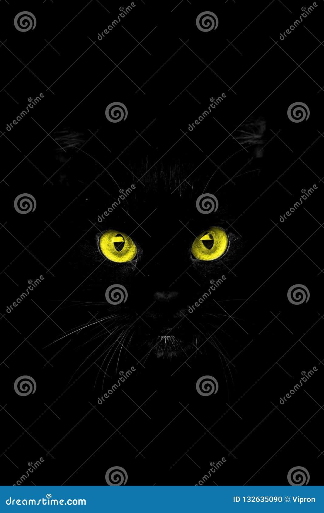 De ogen van de schaduw