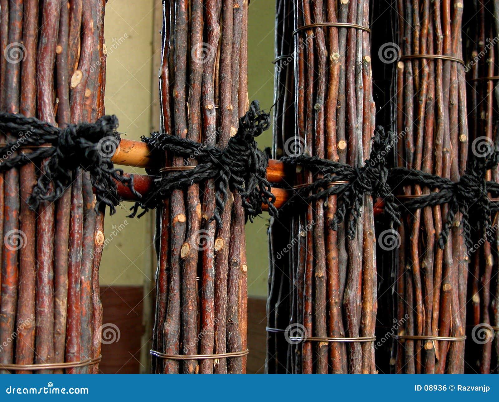 De omheining van de acacia