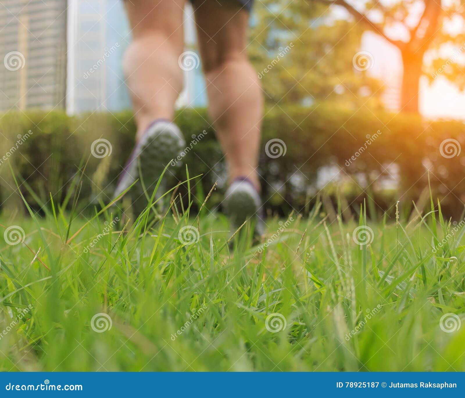 De onduidelijk beeldvoeten springen op het groene gras