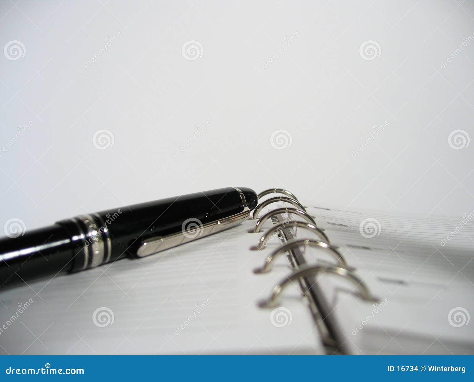 De Ontwerper van de benoeming met Pen