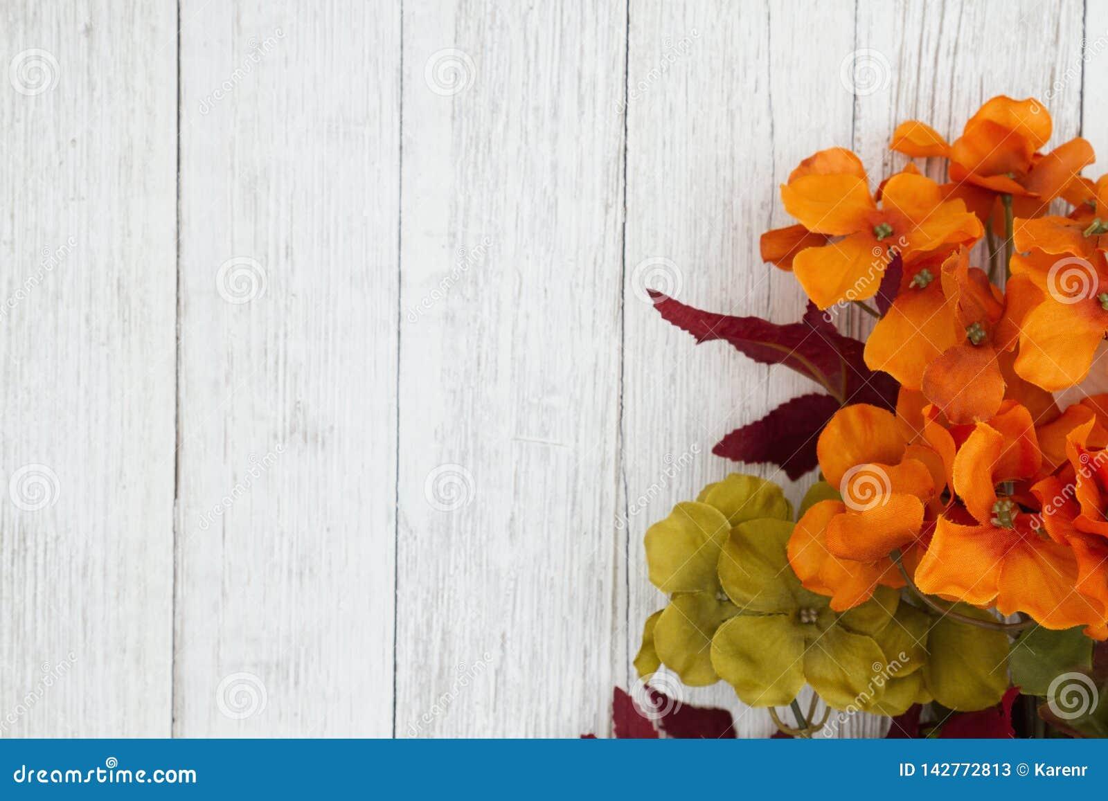 De oranje en rode dalingsbloemen op doorstaan vergoelijken geweven houten achtergrond