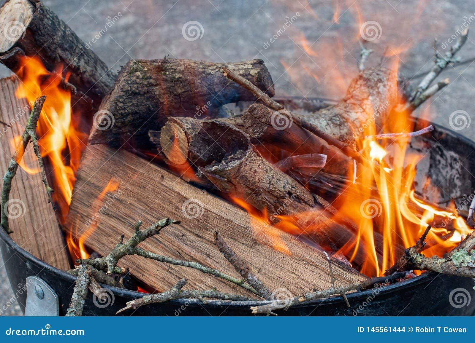 De oranje Vlammen van een Brand branden Logboeken