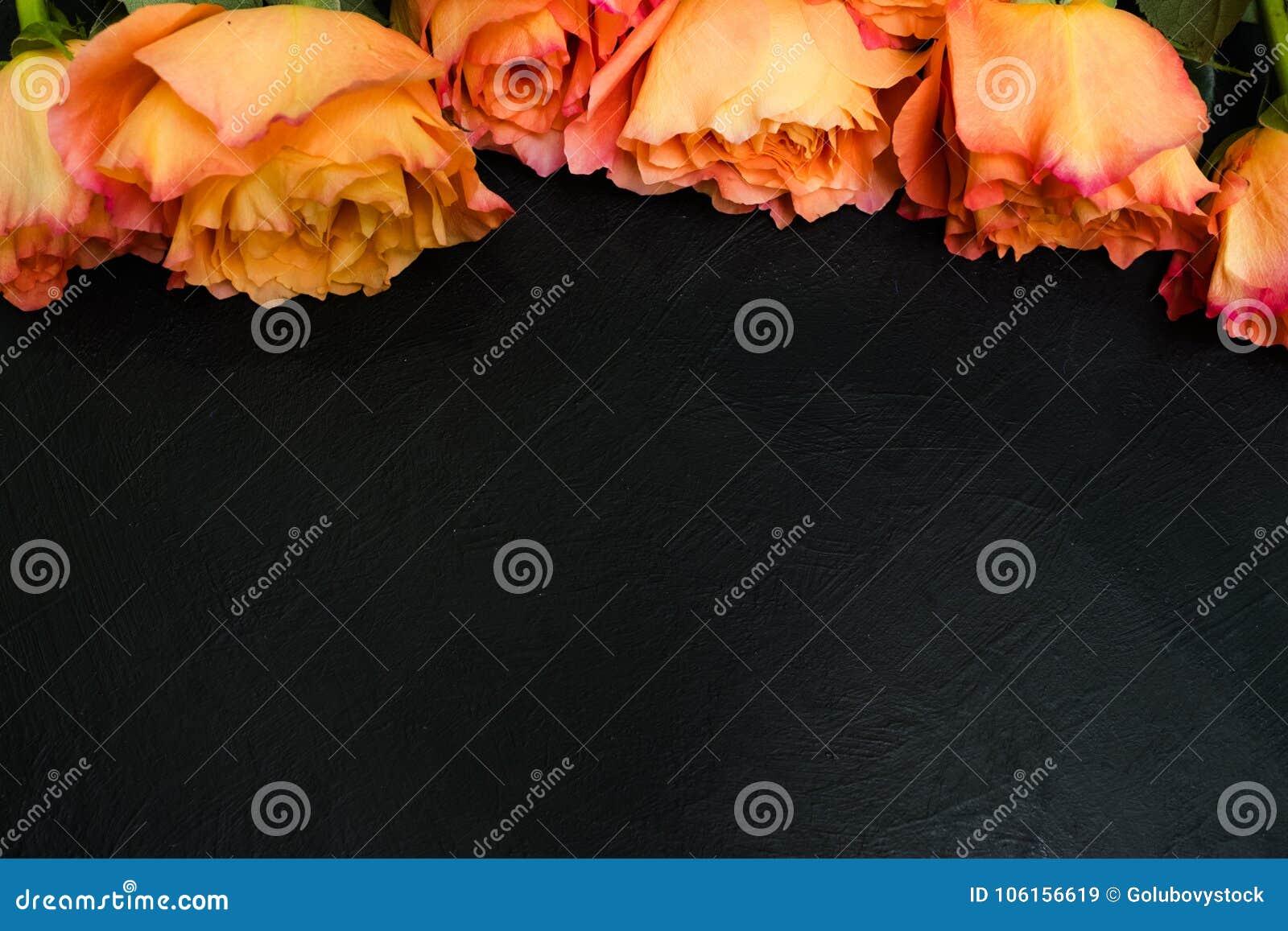 De oranjerode donkere achtergrond van de herfstrozen