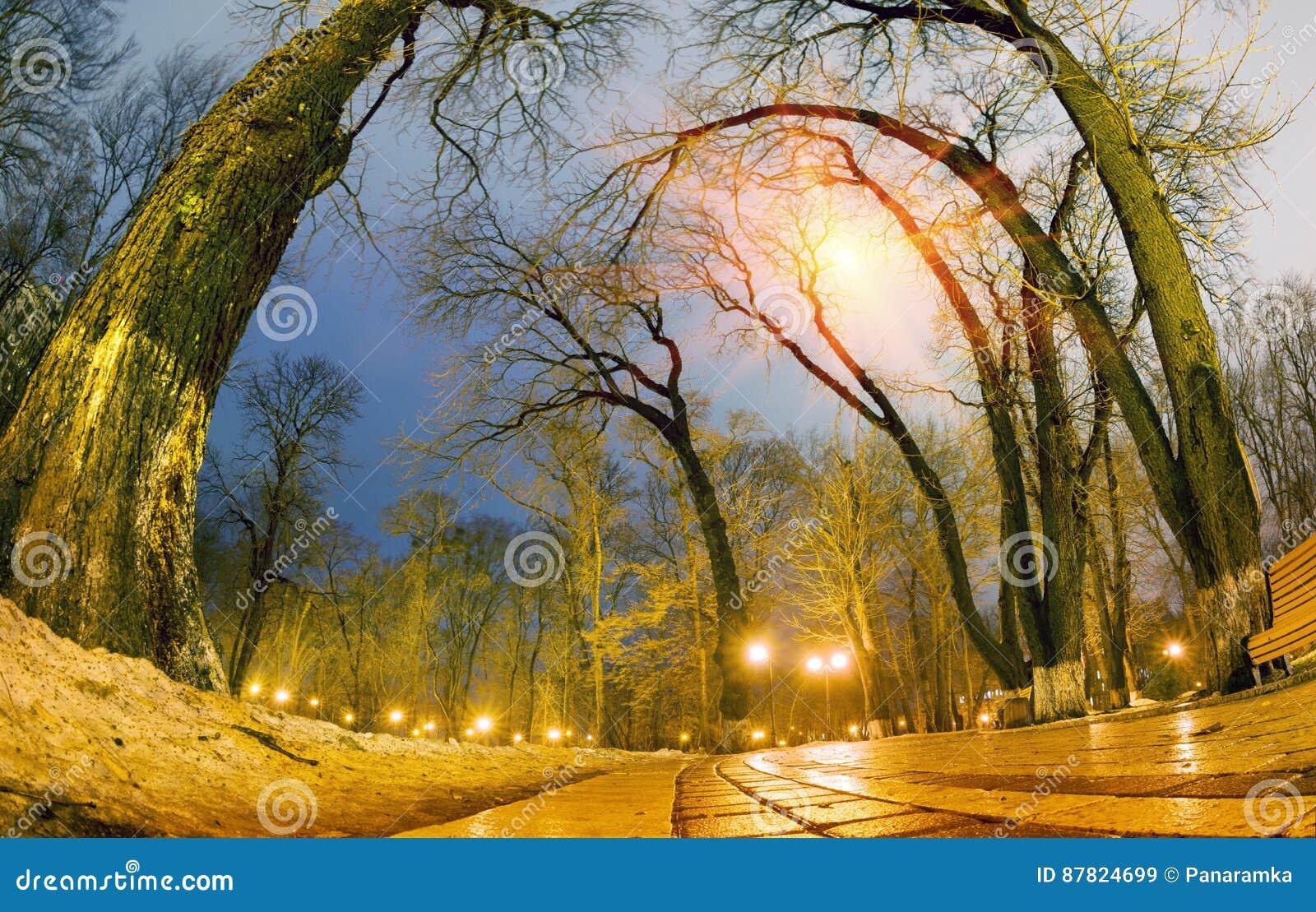 De originele natte straatstenen van de nachtmening