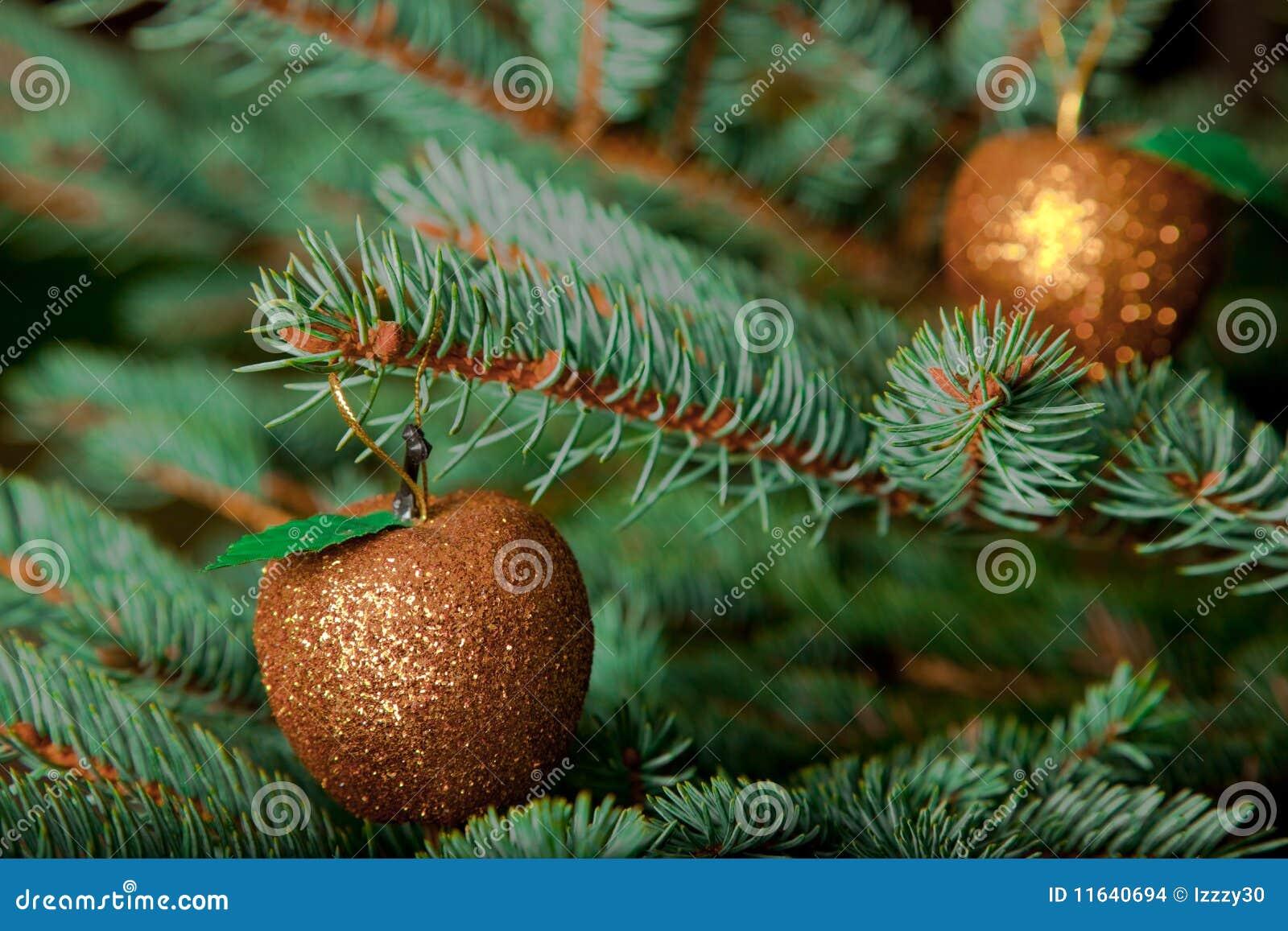 De ornamenten van kerstmis op levende kerstboom stock foto afbeelding 11640694 - Fotos van levende ...