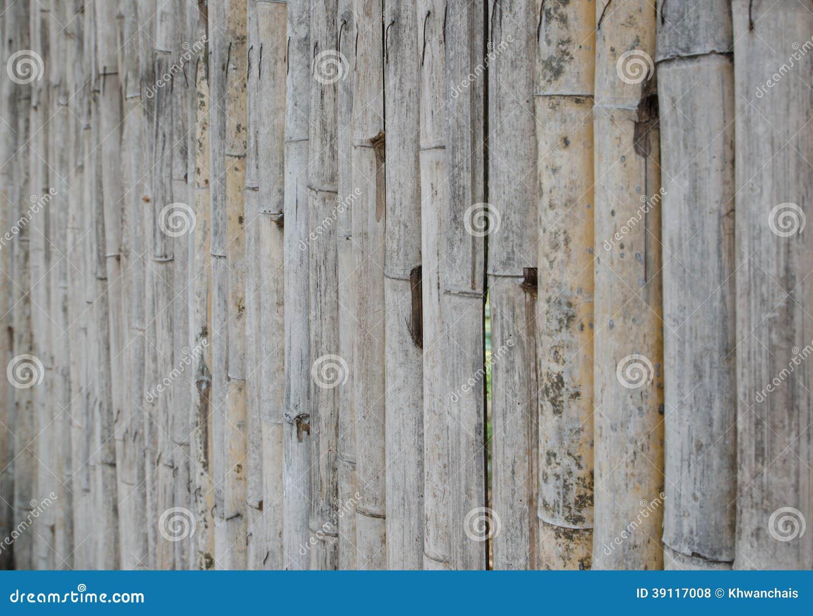 De oude bamboemuur