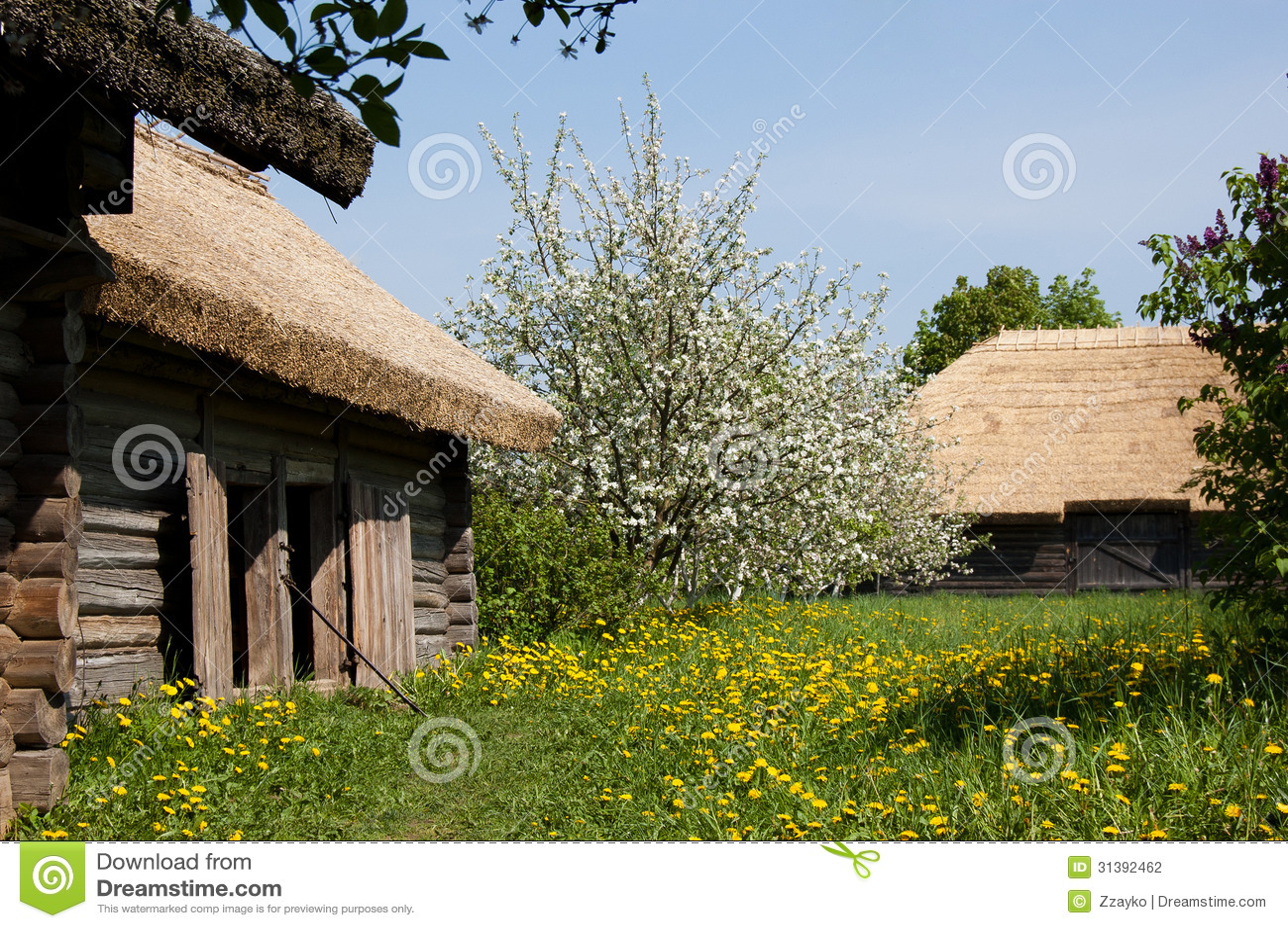 De oude dorpshuizen en de tot bloei komende bomen
