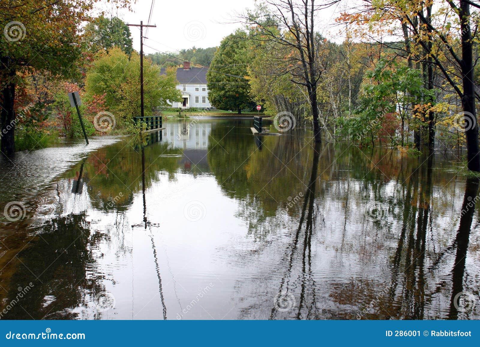 De overstroomde Rijweg van het Land #4