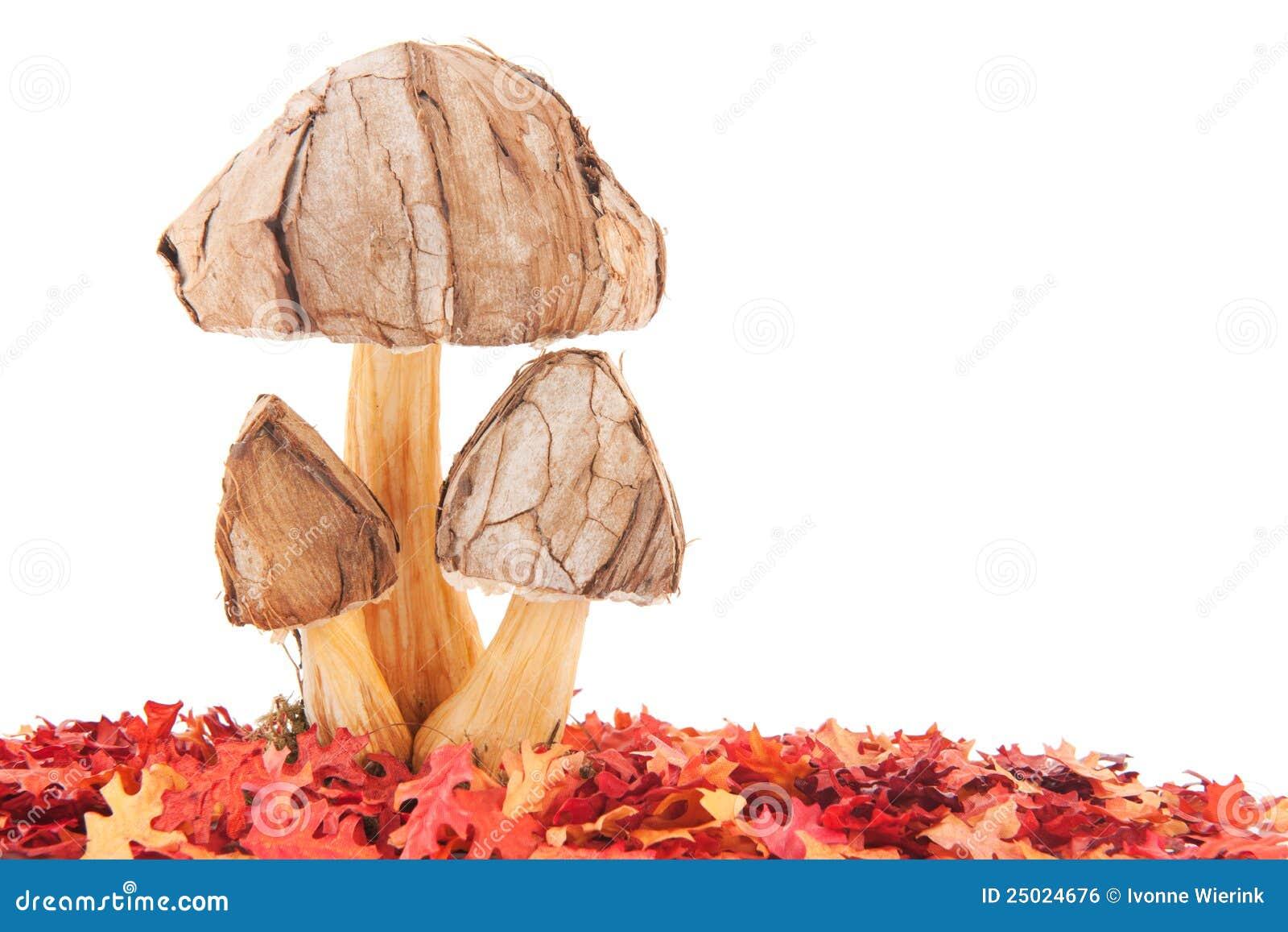 De paddestoelen van de decoratie in de herfst royalty vrije stock afbeelding beeld 25024676 - Afbeelding van decoratie ...
