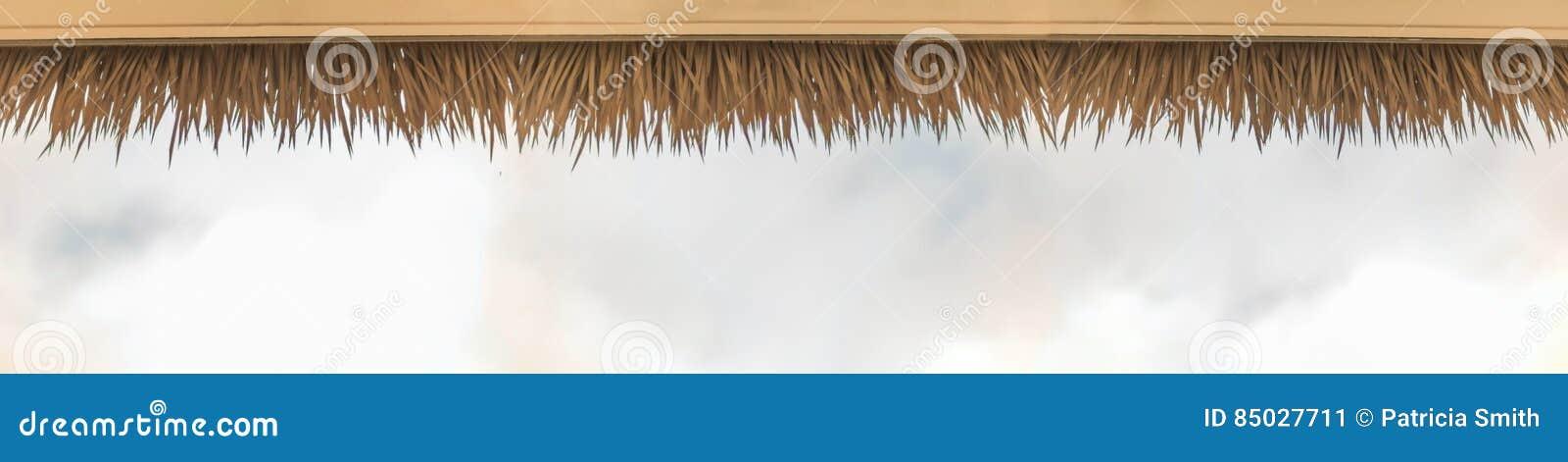 De palm met stro bedekt dak