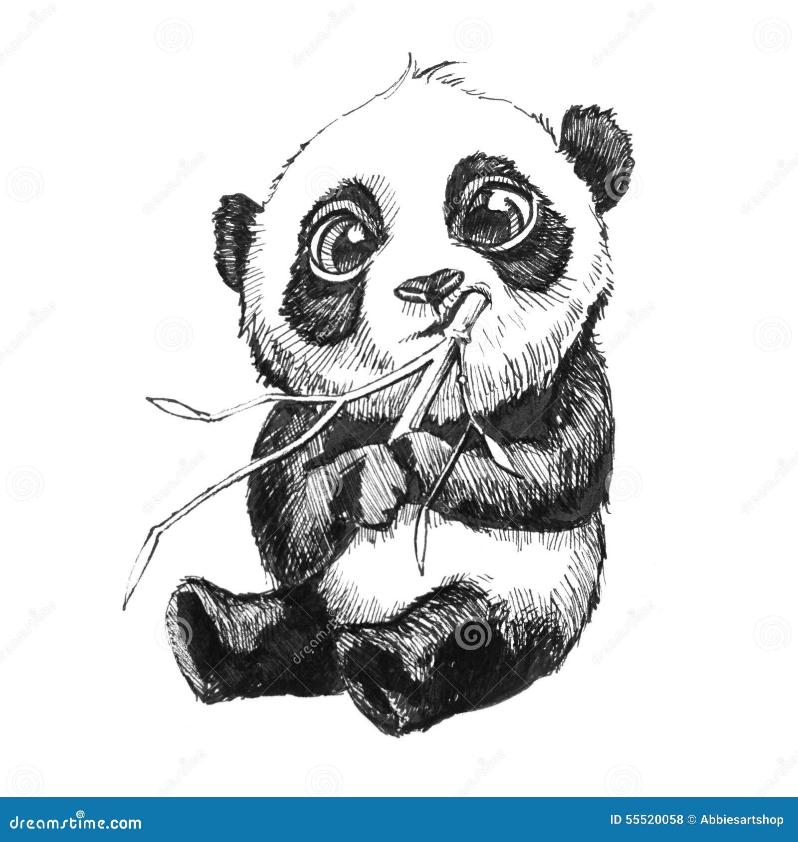 De panda draagt etend bamboehand getrokken illustratie