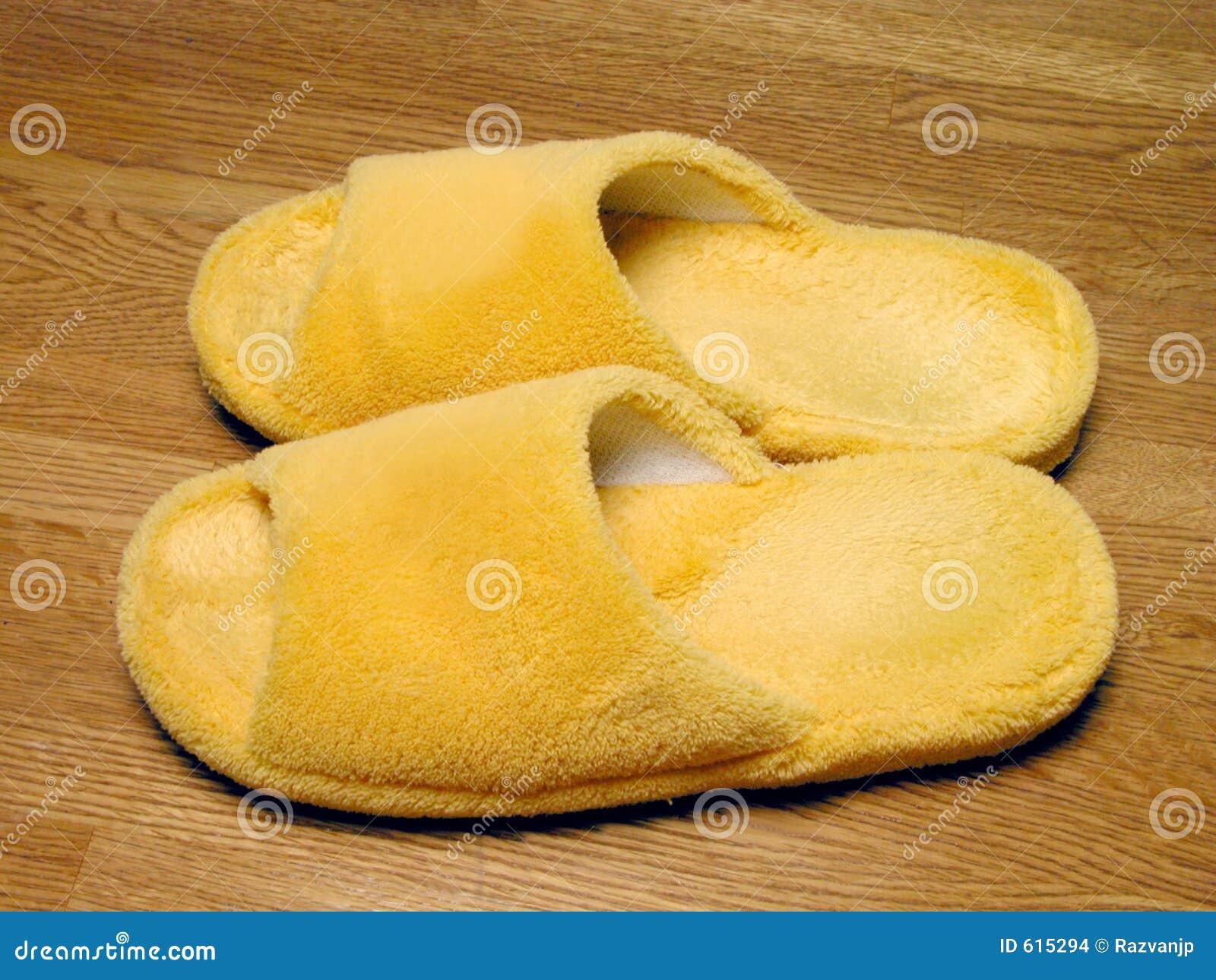 De pantoffels van de pluche