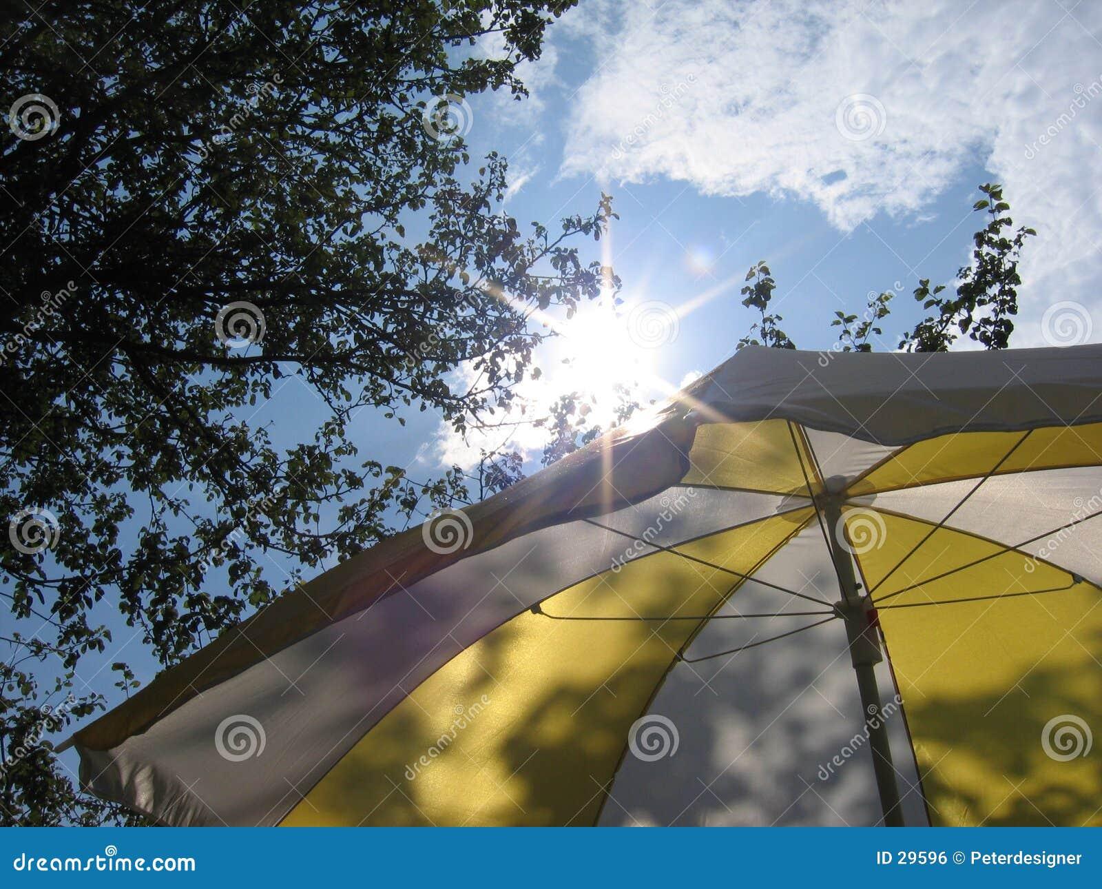 De paraplu van de zomer