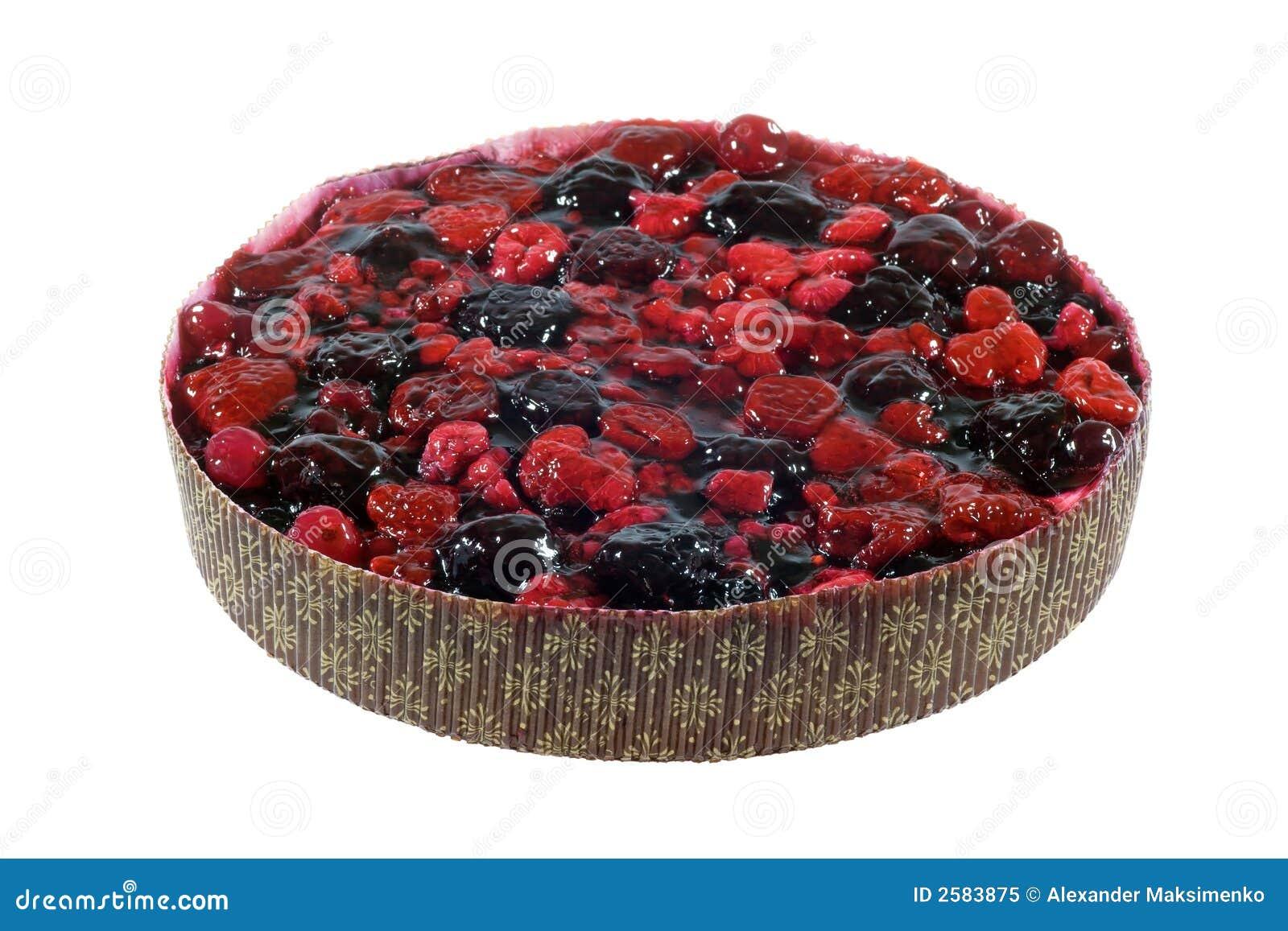 De pastei van de bes/torte