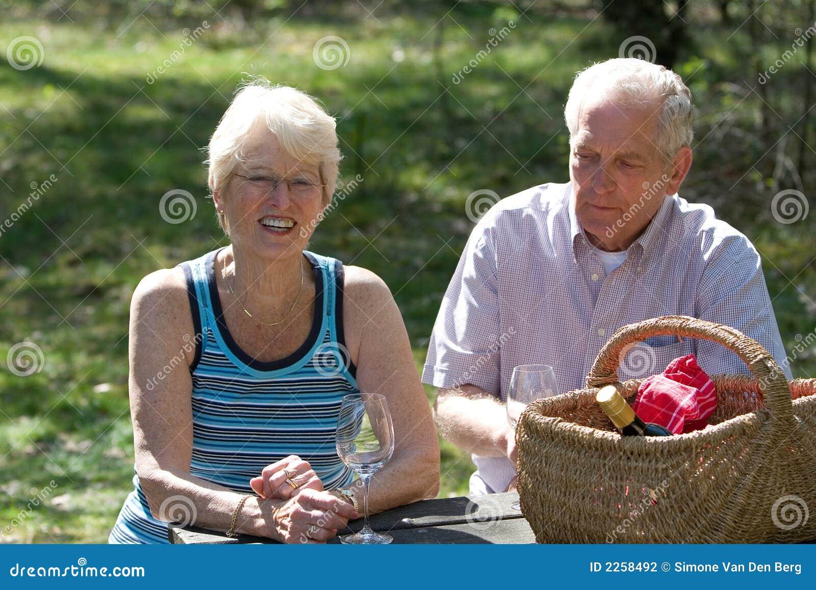 De picknick van de zomer