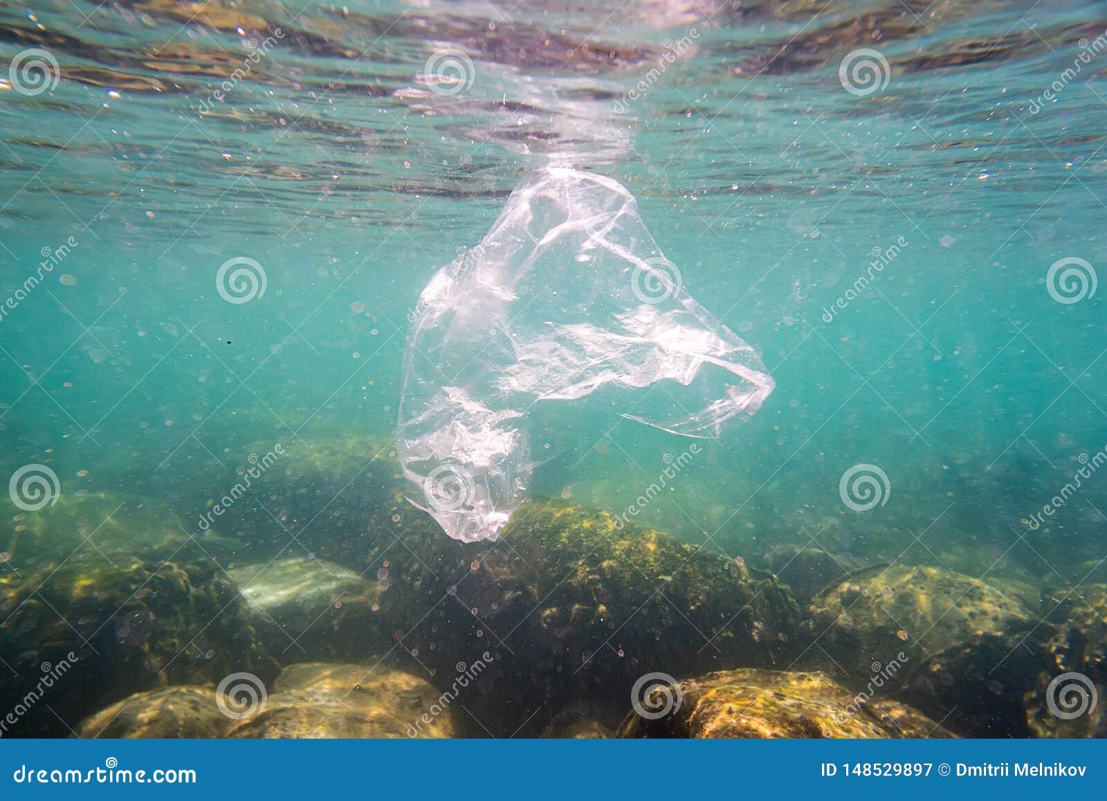 De plastic verontreiniging een verworpen plastic vuilniszak drijft op een tropisch koraalrif voorstellend een gevaar aan het mari