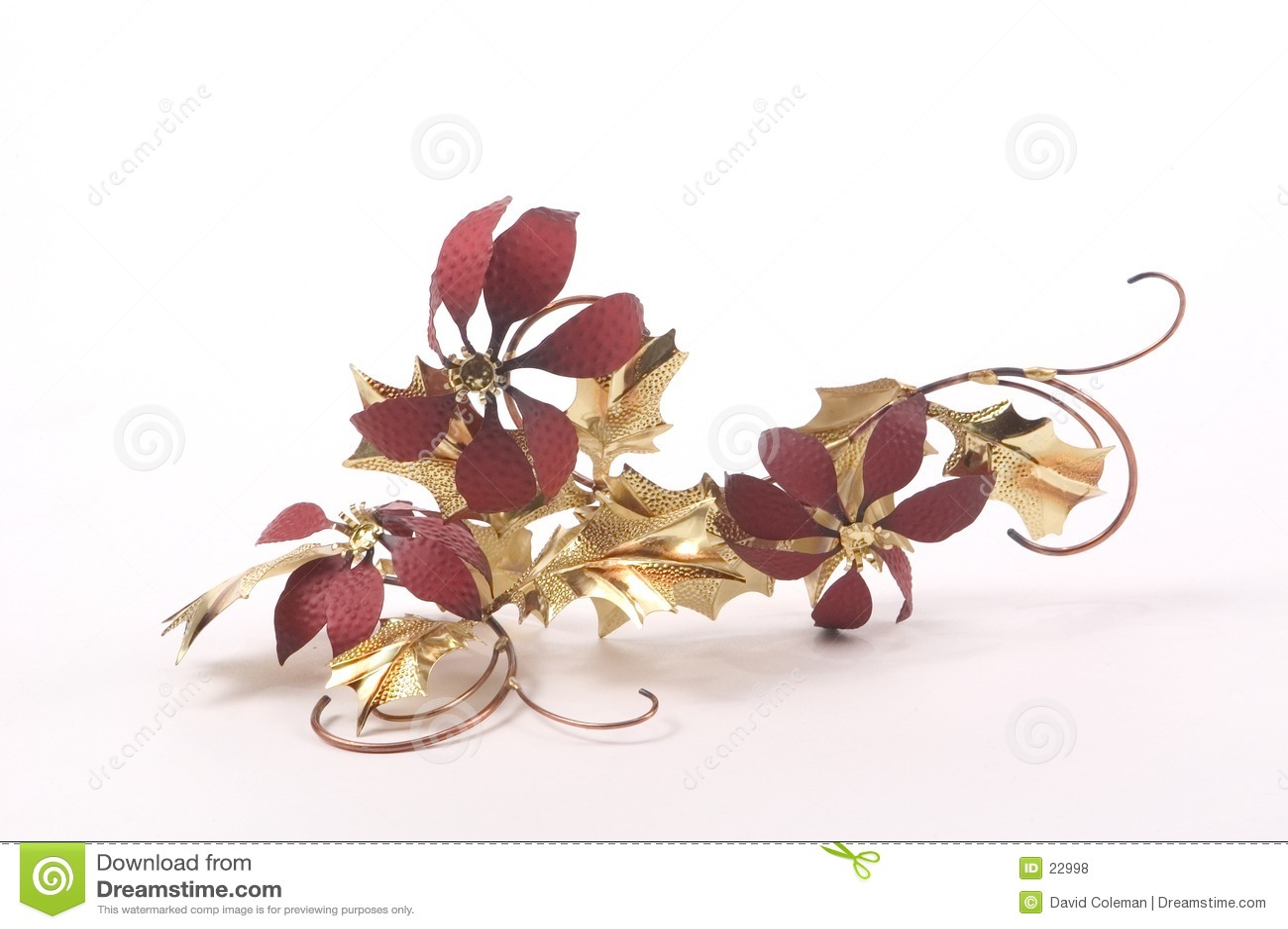 De Poinsettia van de folie