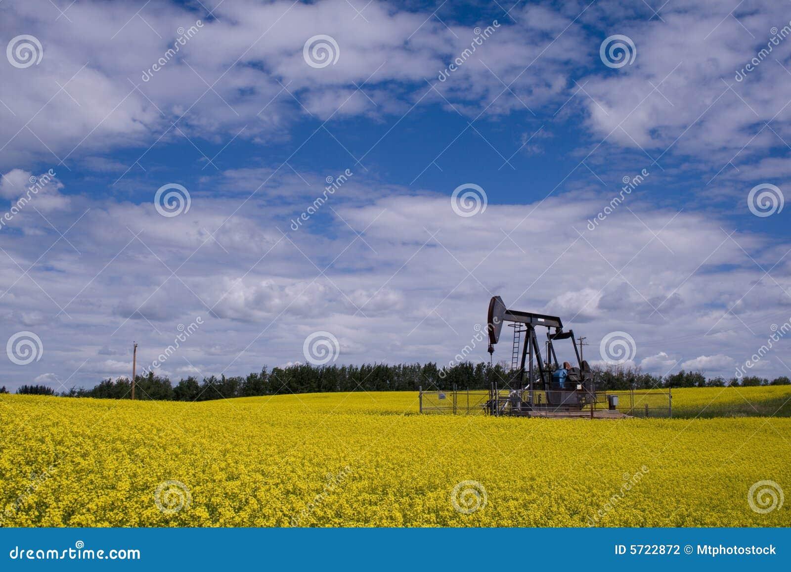 De pomphefboom van de oliebron in geel F