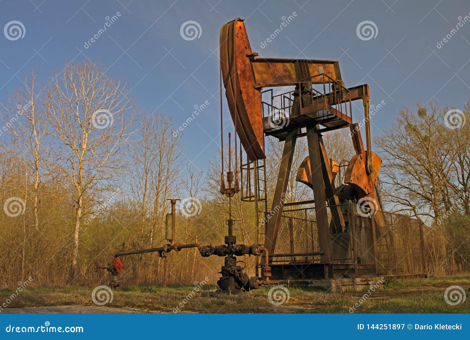 De pomphefboom van de olie