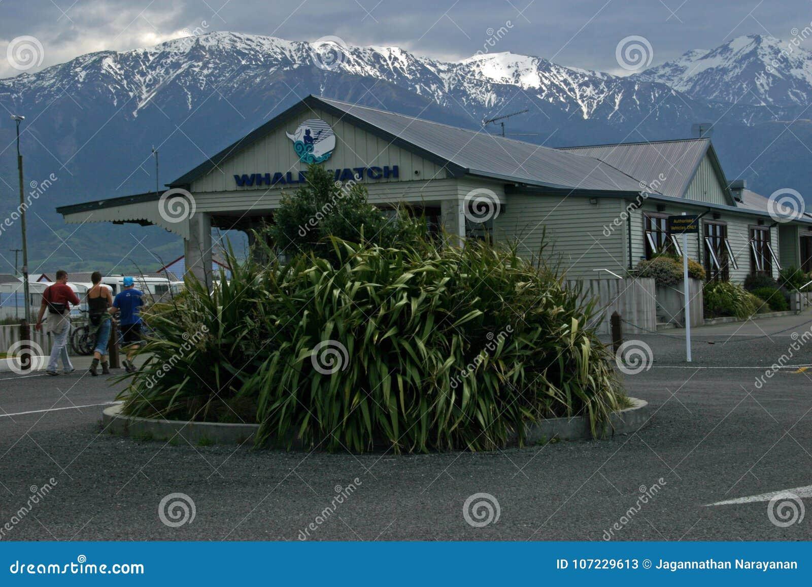 De post van het walvishorloge in Kaikoura, Nieuw Zeeland