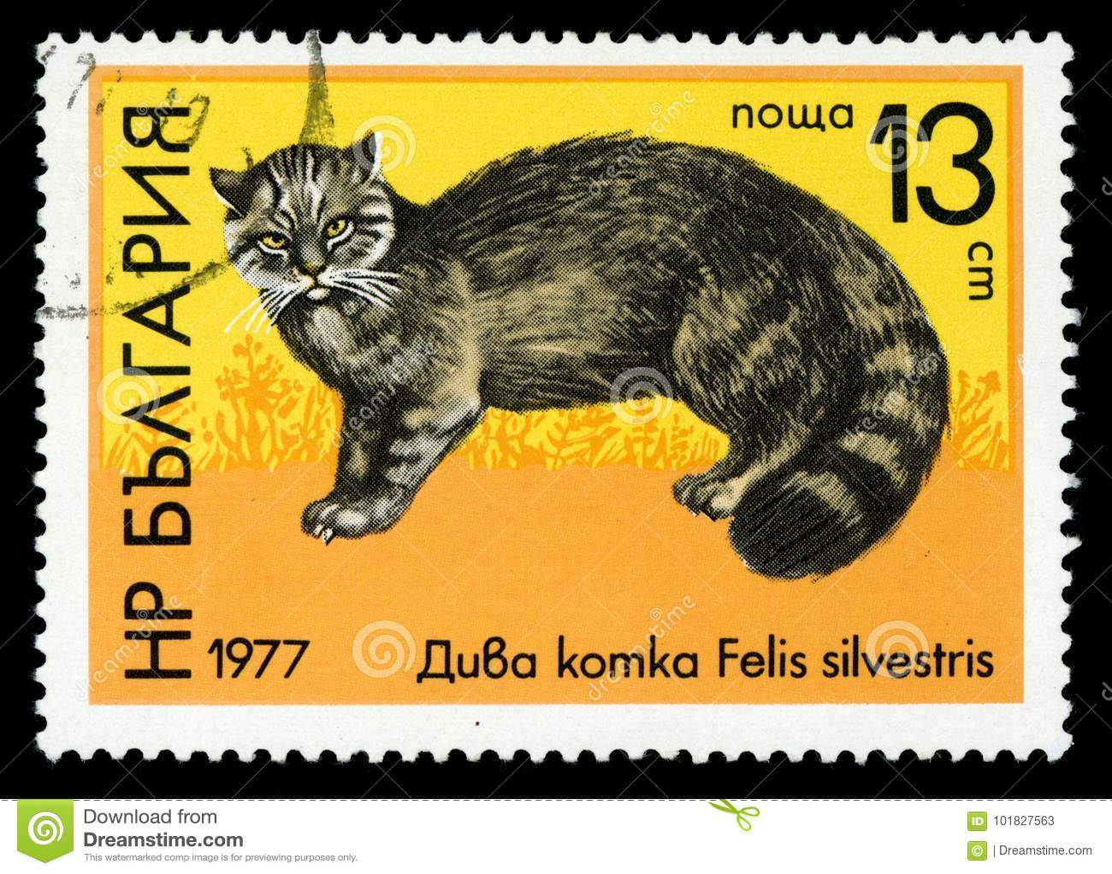 De postzegel van de het Wild` reeks van Bulgarije `, 1977
