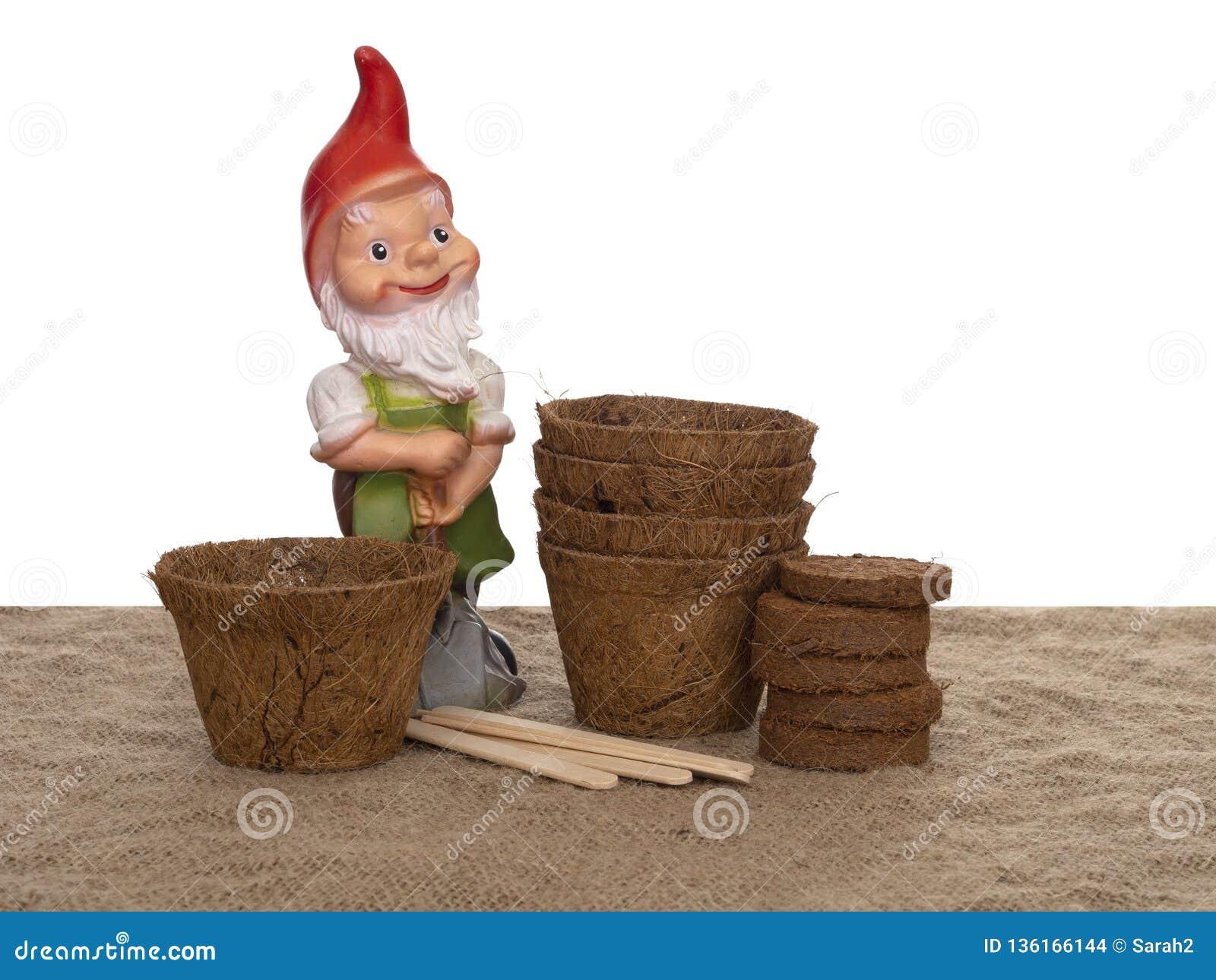 De potten van de coirinstallatie en samengeperst compost met houten etiketten en generische tuingnoom De milieuvriendelijke lente