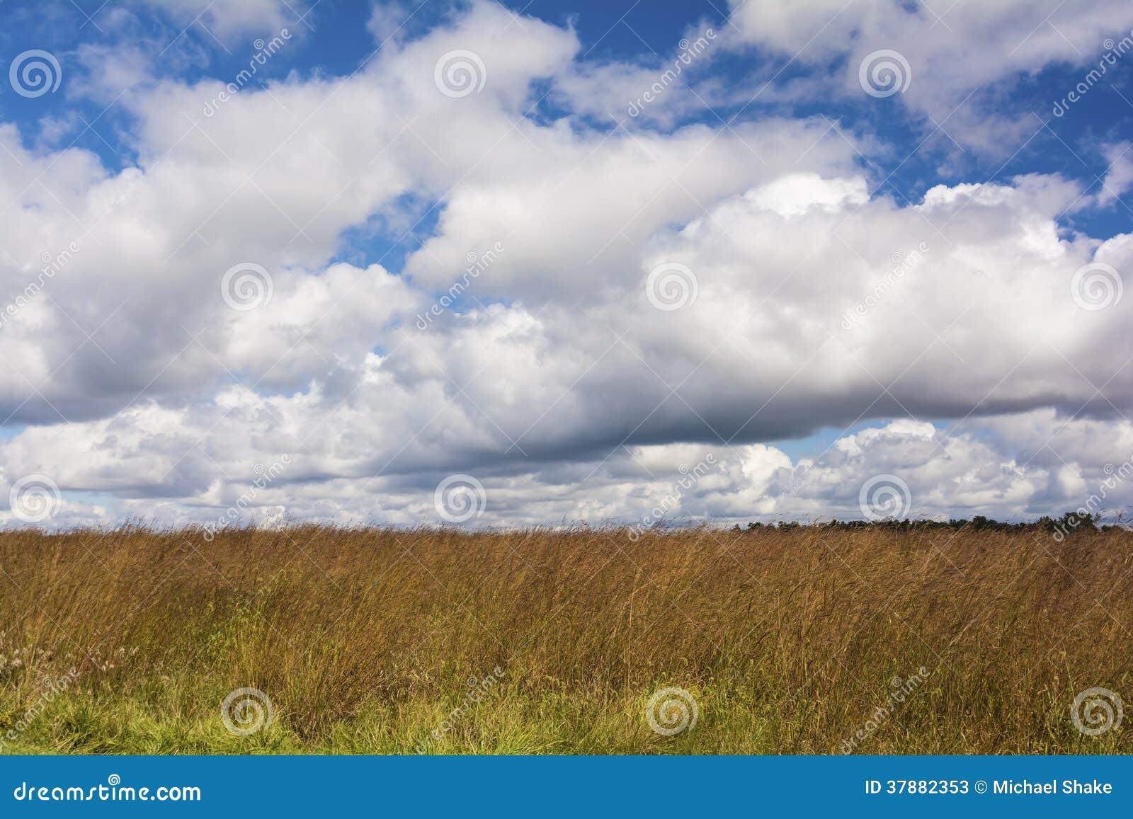 De Prairie van Ohio