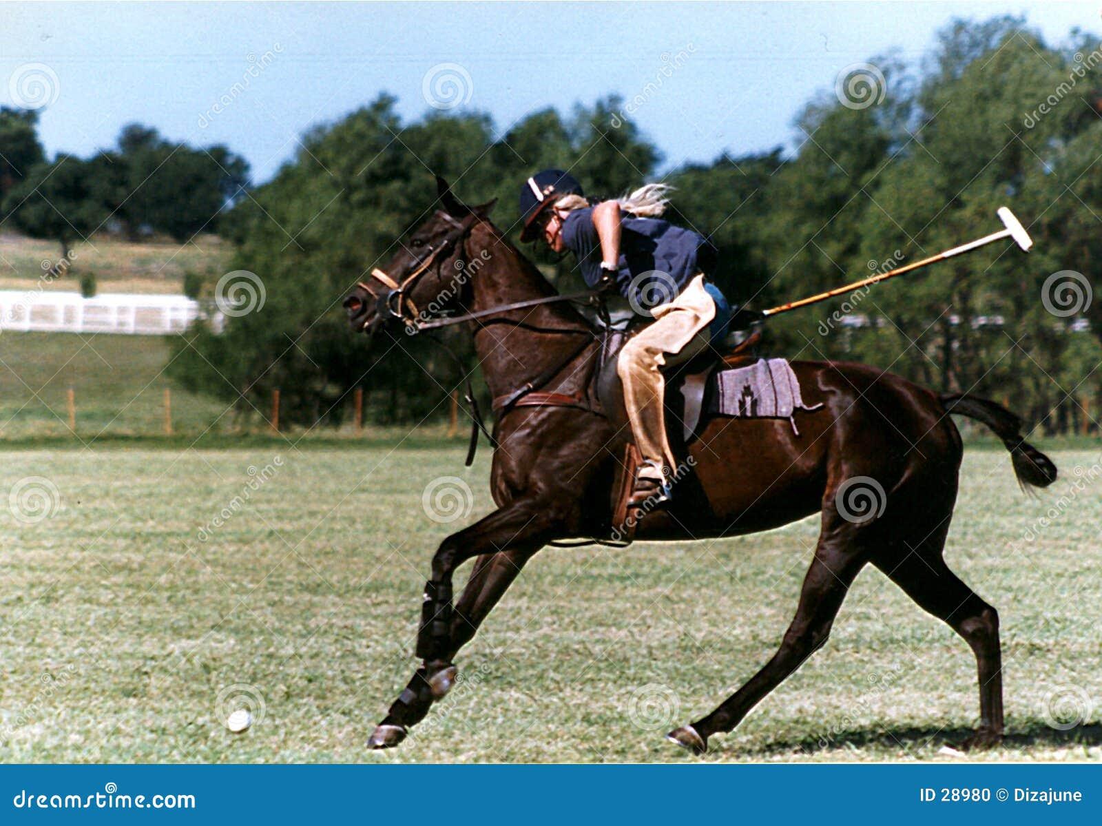De Praktijk van het polo