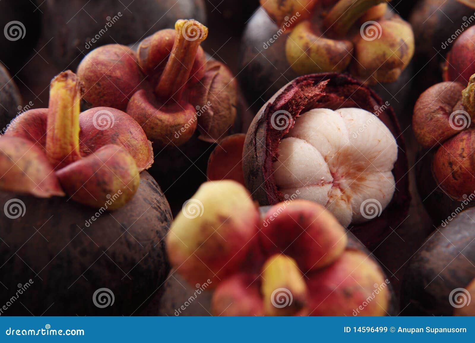 De pulp van de mangostan