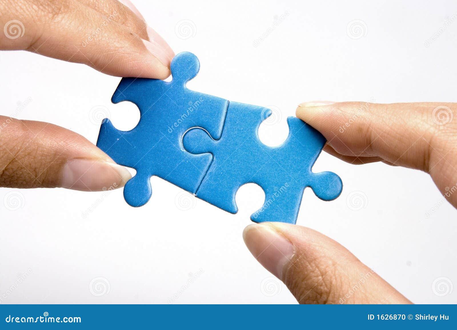 De Puzzel van de holding