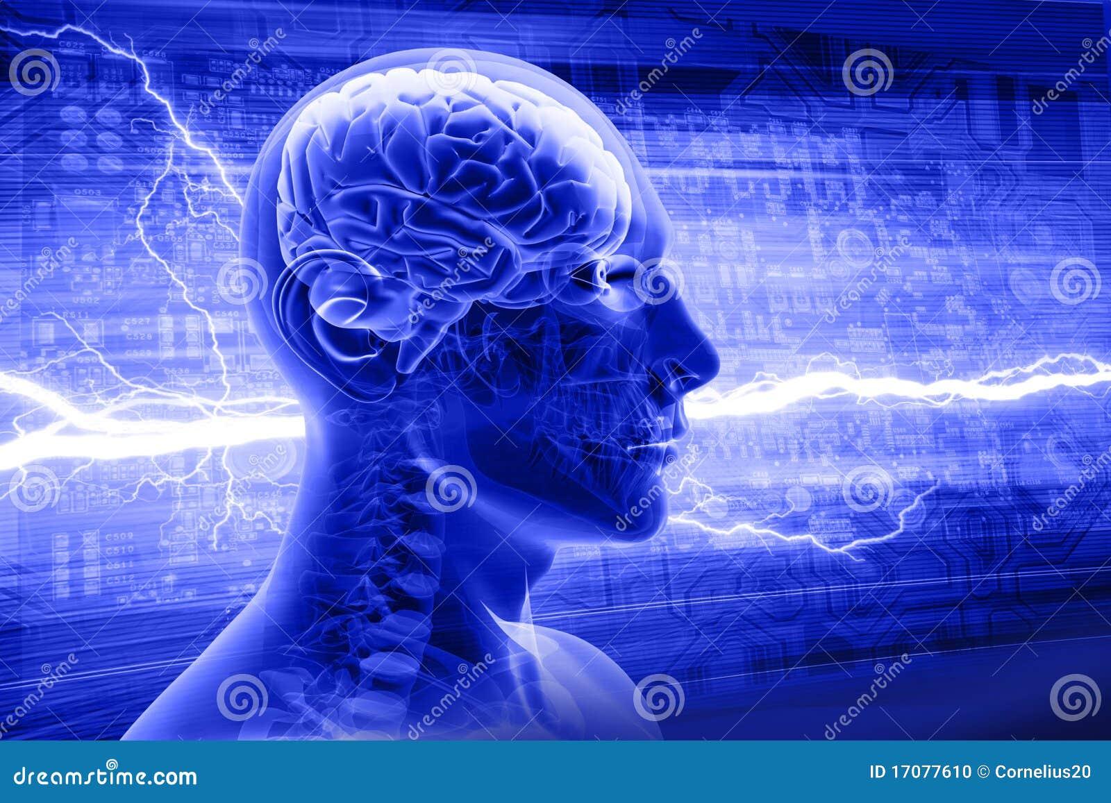 De röntgenstraal van de mens
