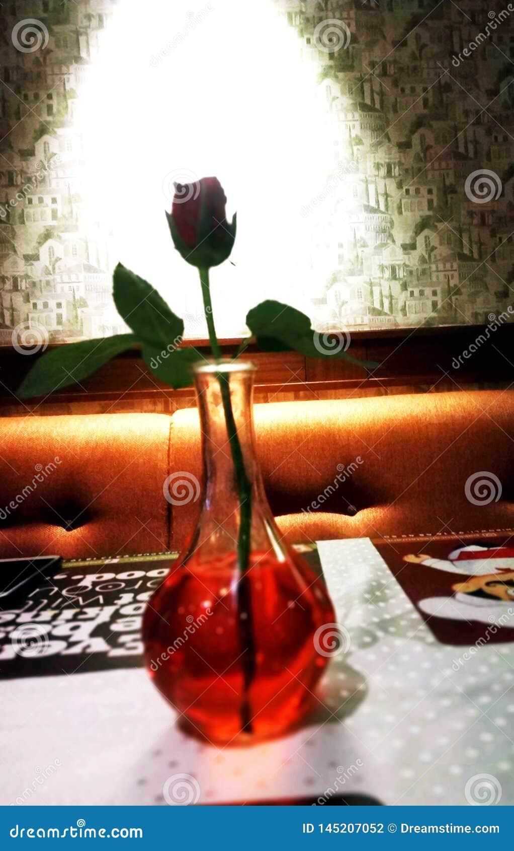 De RedRoseliefde de Aanwijzing van Love@Two-harten door enig kan verbinden nam toe