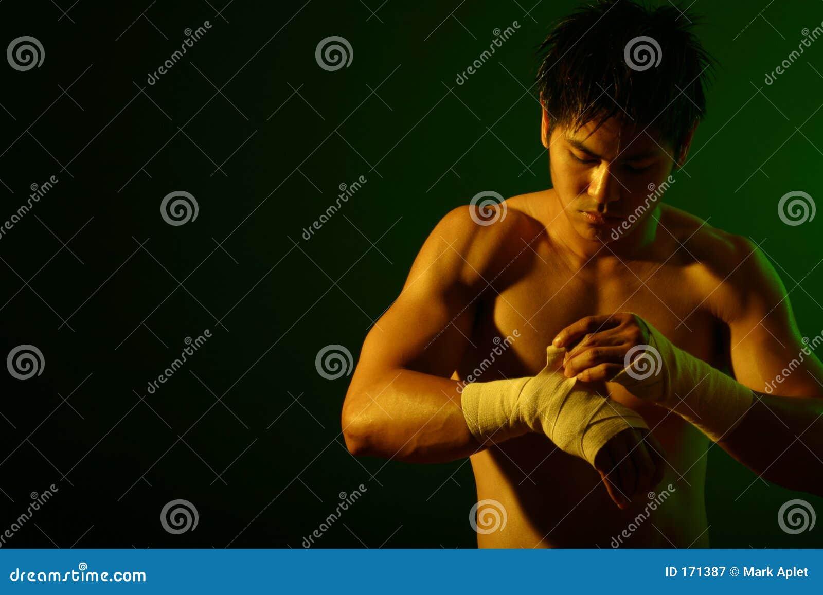 De Reeks van de bokser