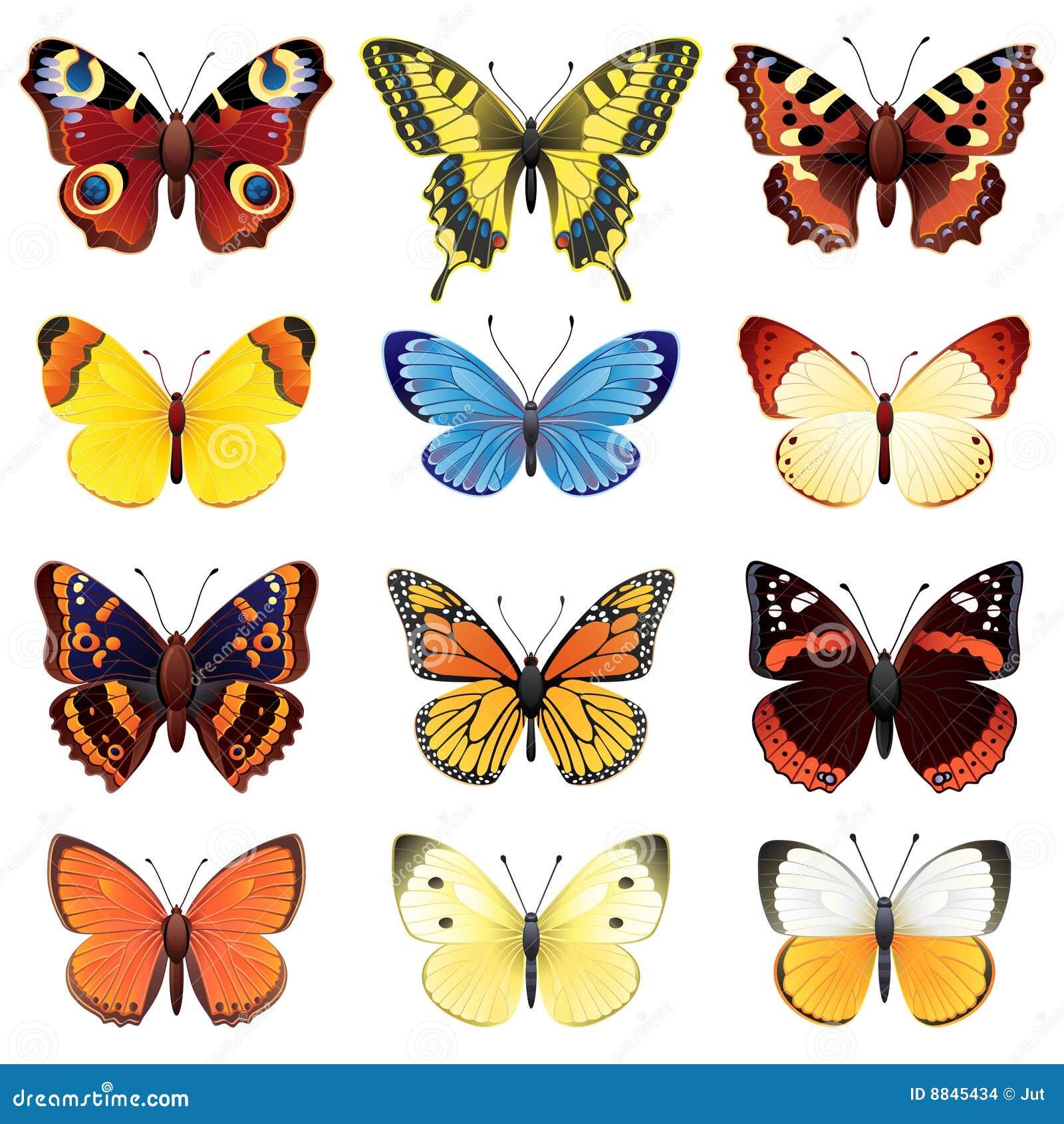 De reeks van de vlinder