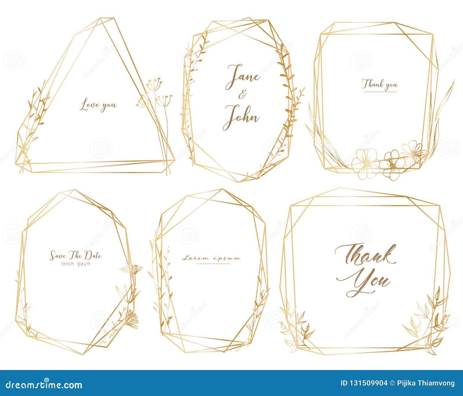 De reeks van geometrisch kader, getrokken Hand bloeit, Botanische samenstelling, Decoratief element voor huwelijkskaart, Uitnodig