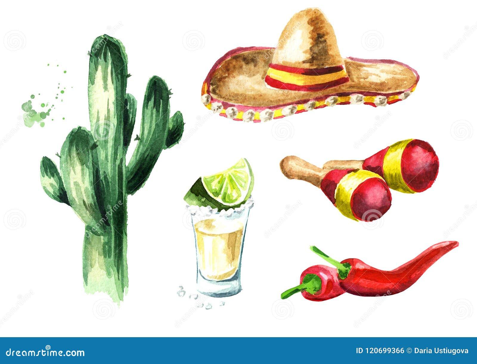De reeks van Mexico Cactus, sombrerohoed, maracas, Spaanse peperpeper, glas van tequila met kalk en zout Hand getrokken waterverf