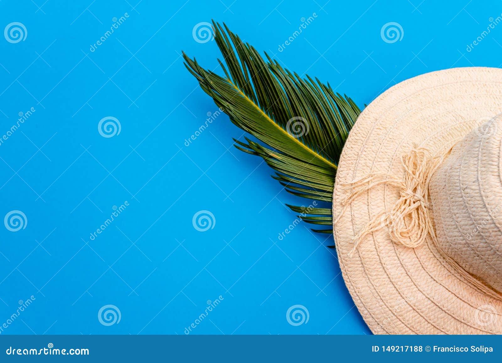 De reizigerstoebehoren, tropisch palmblad vertakken zich op blauwe achtergrond met lege ruimte voor tekst Het concept van de reis