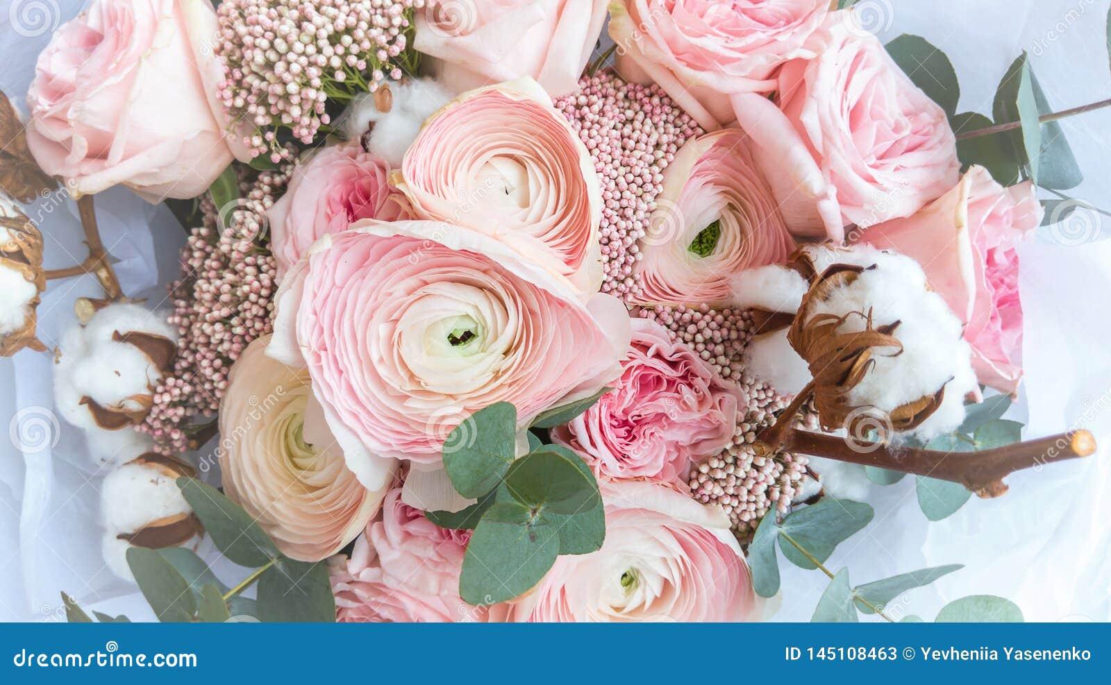 De renoncule de fleur de plan rapproch? couleur rose doucement