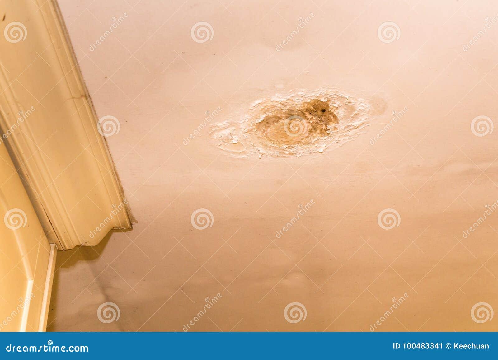 De resultaten van daklekkages beschadigen lelijke corrosie op pleisterplafond