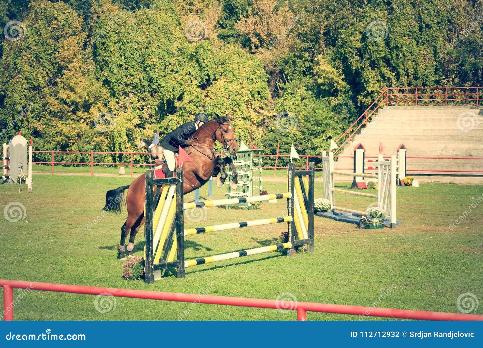 De rit mooi bruin paard en sprong van de jonge mensenjockey over de bifurcatie in ruitersportclose-up