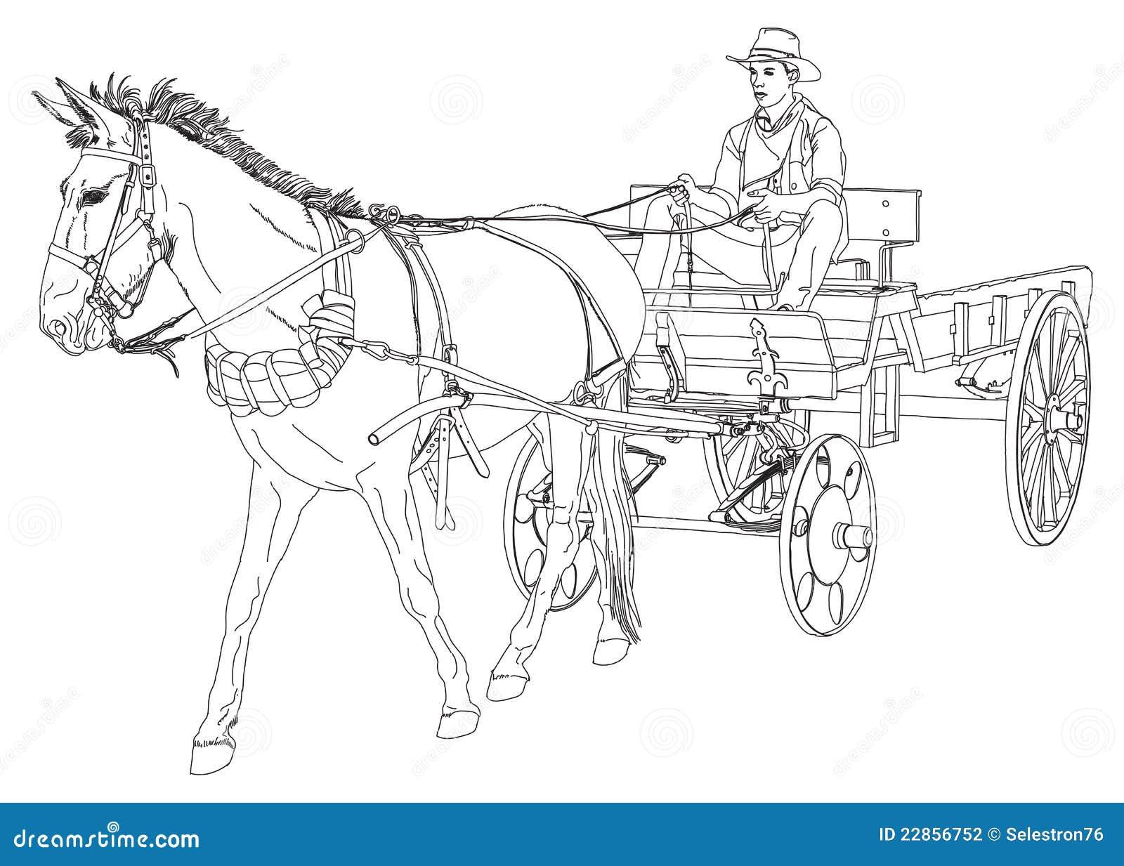 De Ritten Van De Cowboy In Een Wagen Die Door Een Paard