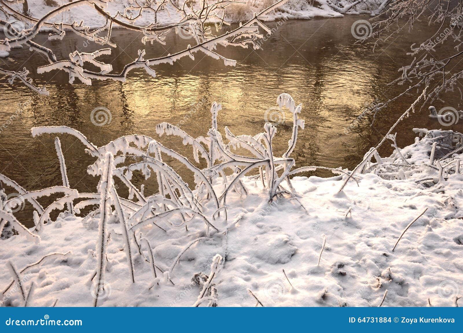De rivier in ijzige dag