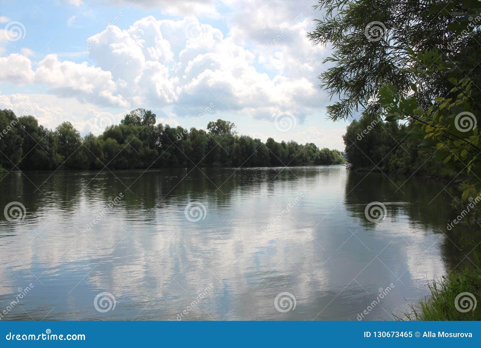 De rivier netto in zomer, die op het bootmilieu de vissen van het meer