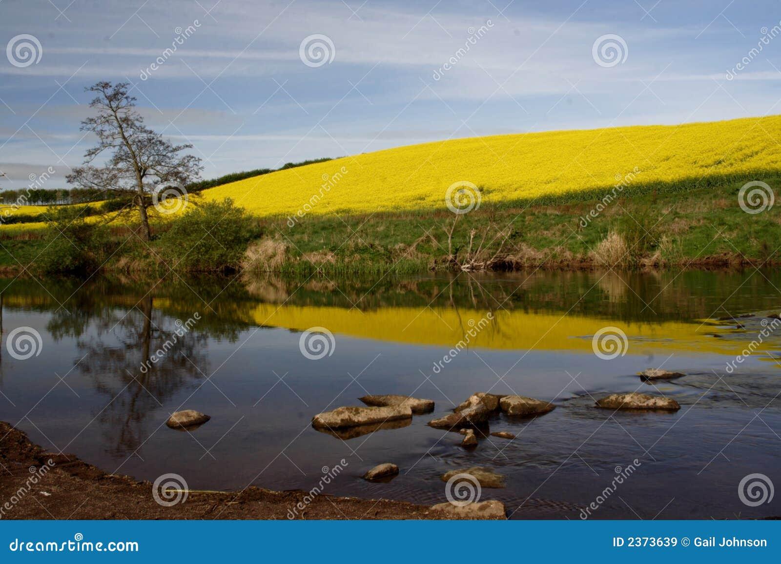 De rivier tot