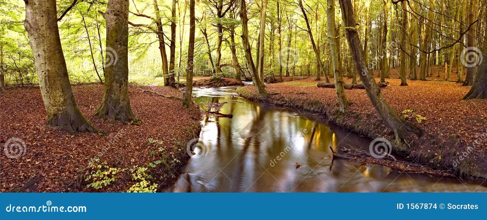 De rivier van de herfst