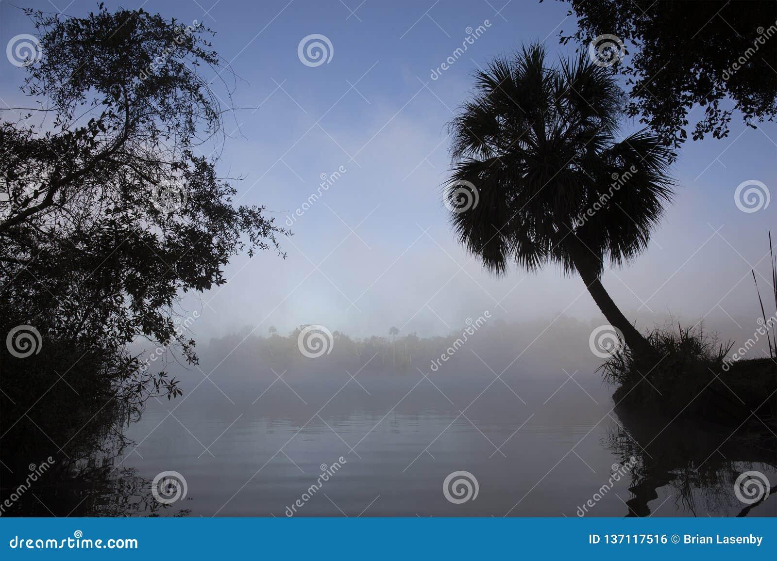 De rivier van Florida op een nevelige ochtend