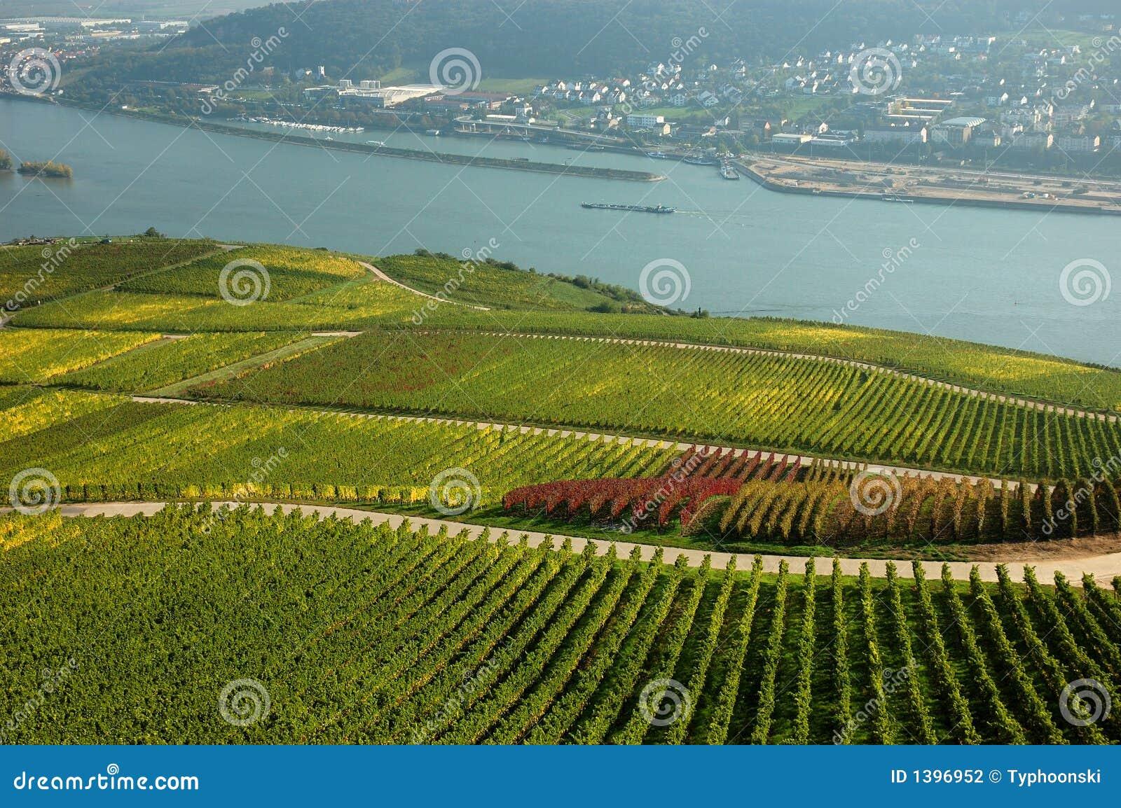 De Rivier van Rijn, Duitsland