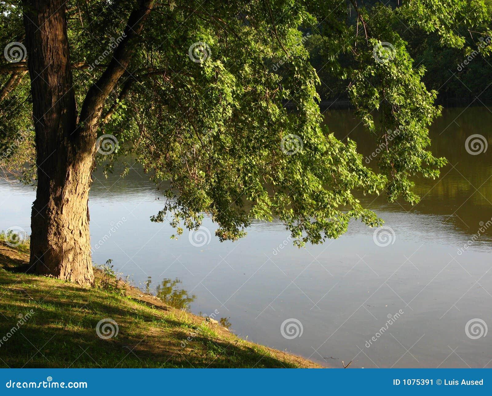De Rivier van Susquehanna