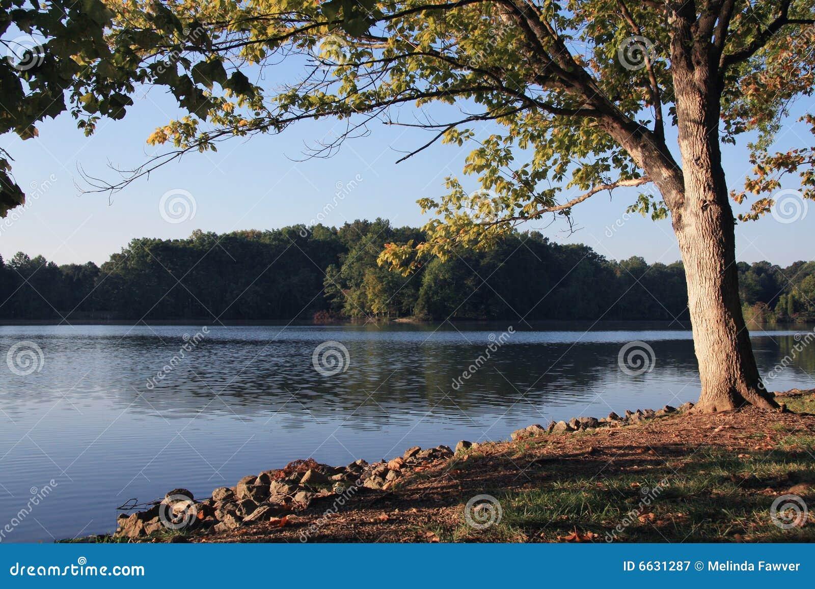 De Rivier van Tennessee