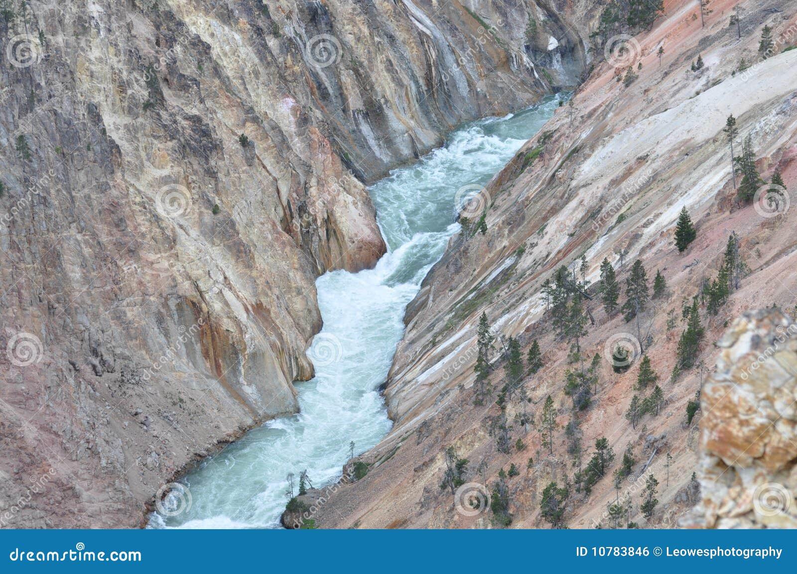De Rivier van Yellowstone